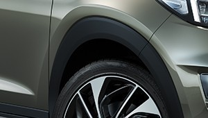 Wheel arch moulding